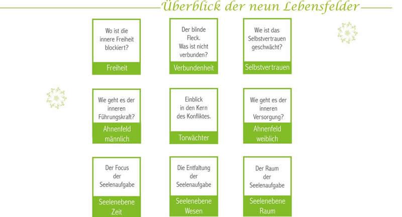 ueberblick-der-neun-Lebensfelder-Kim-Fohlenstein
