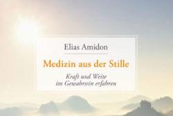 cover-Elias-Amidon-Medzin-Stille-Kamphausen