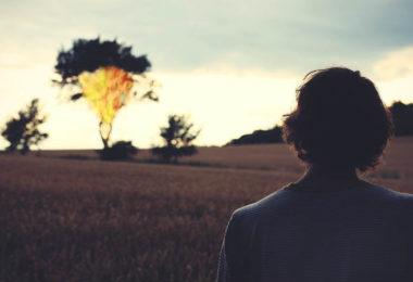 Sinn und Unsinn von Glaubenssaetzen-miracle