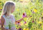 gabe-der-hochsensibilitaet-little-girl