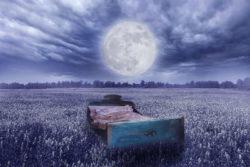 mond-wiese-bett-schwaerze-der-nacht-schlaf-eigentuemlicher-zustand-spirit-online-bed