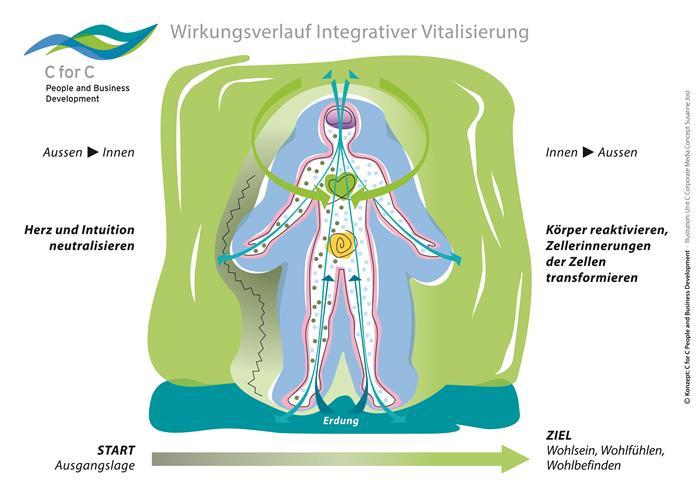 Claus-Walter-Beitrag-5-Wirkungsverlauf