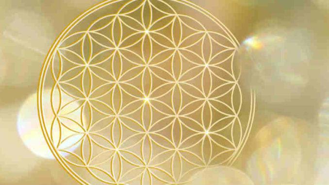 ausbildung-spiritueller-Heilberater-Ulrike-Stoeckle-engelsblume