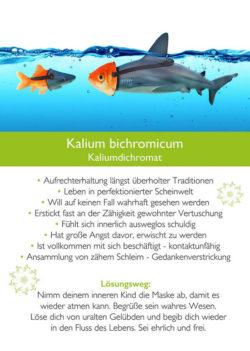 Karte-Kalium-bichromicum-Kopie-Kim-Fohlenstein