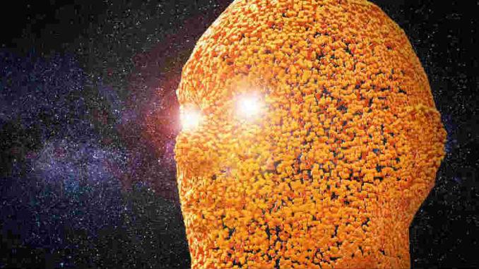 Physik-Metaphysik-Geist-Leben-Materie-Bewusstsein-Tattva-Viveka-head