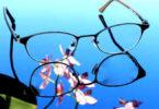 brille-blume-sehen-gesehen-wahr genommen werden-glasses