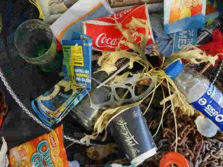 Wegwerfgesellschaft-Plastikmuell-Umweltverschmutzung-Klimawandel-rubbish