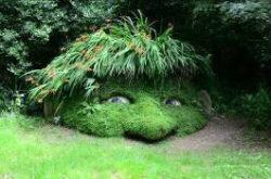 Sued-Englandreise2020-mystische-Seite-Englands-Barbara-Bessen-7