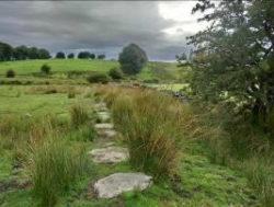 Sued-Englandreise2020-mystische-Seite-Englands-Barbara-Bessen-6