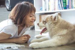Tier-neu-begegnen-Vergangenheit-heilen-Frau-Hund