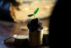 neue-Finanz-Geldsystem-Werte-Andrea-Riemer-money