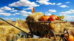 Zur Ruhe kommen – die ausgleichenden Energien des September