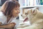 Tier-neu-begegnen-Vergangenheit-heilen-Frau-Hund-girl