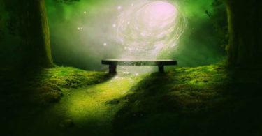 bank-wurmloch-wald-energie-galaxy
