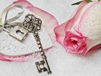 im-herzen-beruehrt-schlssel-herz-rose-heart