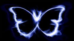 Astrologie-Oktober2019-Kirsten-Hanser-butterfly