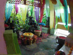 Bali-ethnoTOURS-Alexandra-Stenner-4