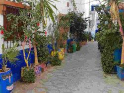 Sufi-Marokko-ethnoTOURS-Alexandra-Stenner13