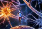 Gehirntuning-BrainUpdate-Svitlana-Regittnig
