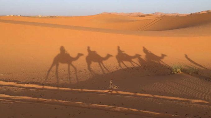 Marokko-ethnoTOURS-Alexandra-Stenner-desert
