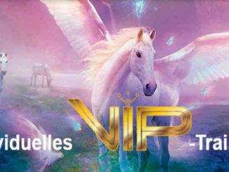 Mein-Traumleben-individuelles-VIP-Training-Svitlana-Regittnig