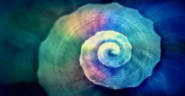 prinzip-der-entsprechung-dritte-universelle-gesetz-snail