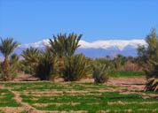 Hoher-Atlas-Reisebericht-Marokko-ethnoTOURS-Alexandra-Stenner