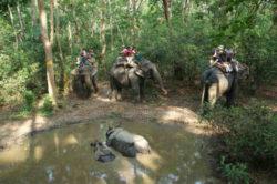 nationalpark-nepal-reise-lion-tours-sabine-stegmann-nepal