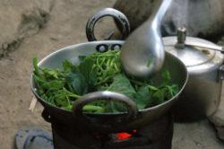 nepal-reise-lion-tours-sabine-stegmann-cook