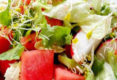 Ausbildung-Ayurveda-Ernaehrungsberatung-wolfgang-neutzler-watermelon