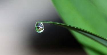 Faszination-Meditation-drop-of-water