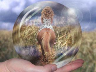 Karma-zwischen-Mensch-und-Tier-horsewoman