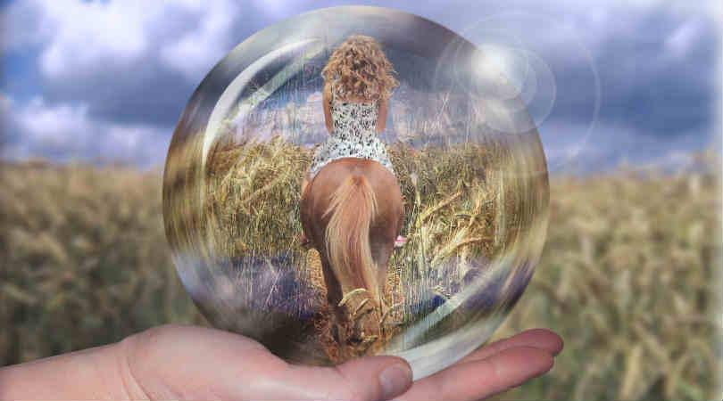Karma zwischen Mensch und Tier - Verbundenheit Spirit Online