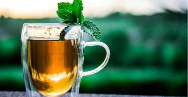 Ayurveda-Detox-Fasten-ayurveda-fasten-Fastenwoche-Gesundheit-teacup
