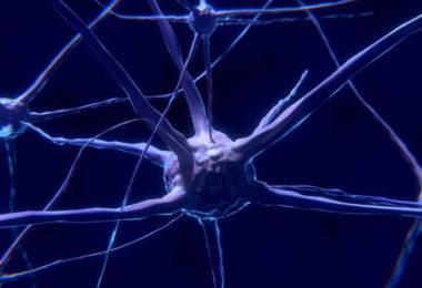 Bewusstseinsreise -nerven-zelle-nerve-cell