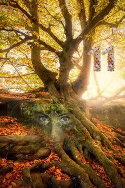 doppelt-baum-gesicht-tree