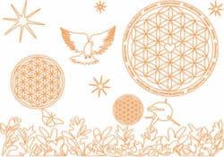 natur-apricot-biobaumwolldecke-siebertAchtsamkeit