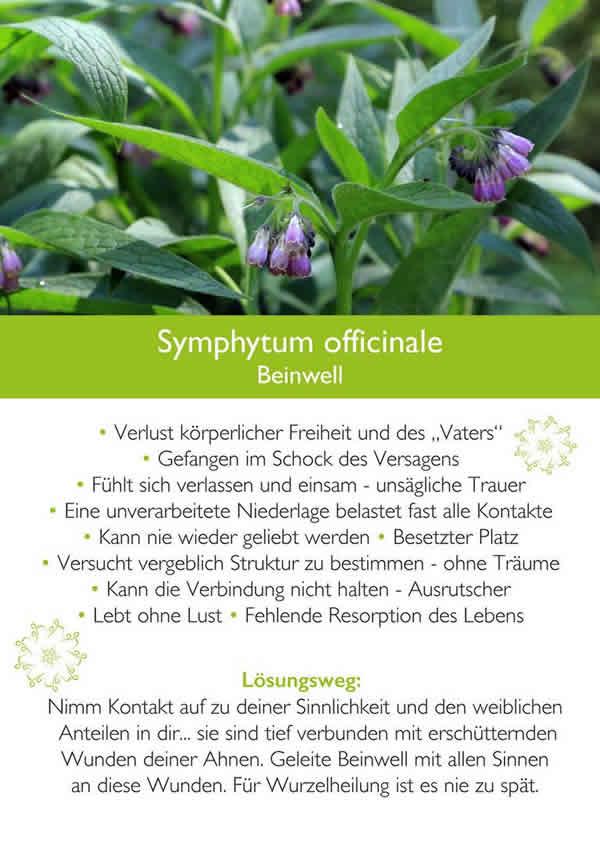 kim-Fohlenstein-Karte-Symphytumt