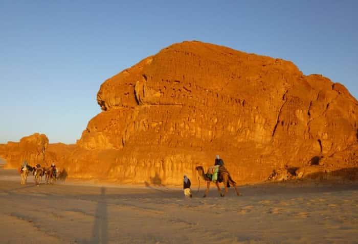 2-Kamel-Gruppe-Limberger-Sinai-Reise