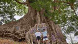 Reisebericht-Kapverden-Ethno-Tours-2