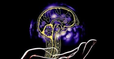 Gehirn-hand-artificial-intelligence