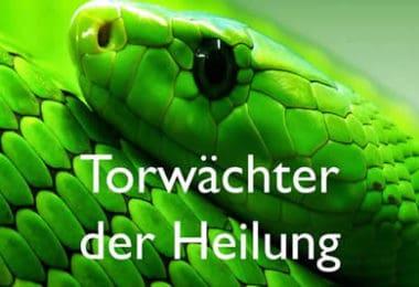Kim-fohlenstein-Schlangen-TDH-Cover