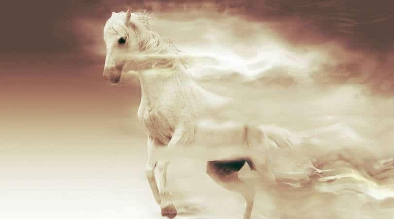 Wind-Goetter-des-Windes-pferd-fantasy-mare