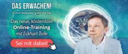 Tolle-Kamphausen-onlinetraining