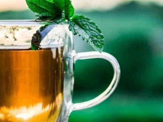 ayurveda-fasten-Fastenwoche-Gesundheit-teacup