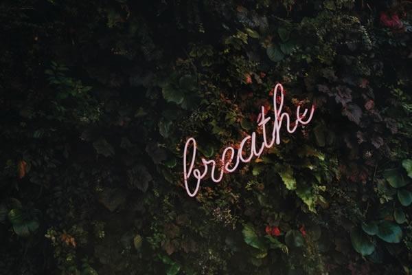 efeu-Schriftzug-Atmen