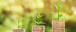 Geld und Fülle-geldstuecke-money