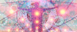 Evolution-intelligente-zellen-quantum-physics
