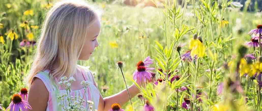 kind-blumenwiese-little-girl