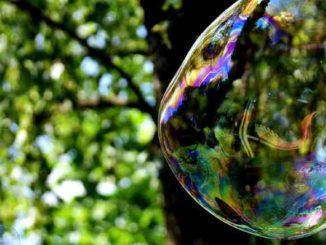 seifenblase-soap-bubble